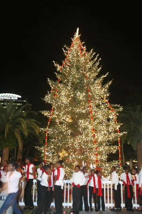 downtown orlando christmas tree lighting at lake eola