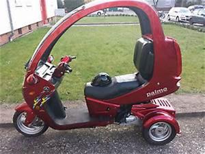 3 Rad Roller Mit Autoführerschein : palmo t150 3 rad roller ebay ~ Kayakingforconservation.com Haus und Dekorationen