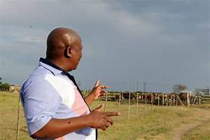Malema's farms, proceeds of fraud and corruption | South ...