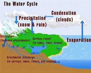 Groasis Waterboxx Diagram