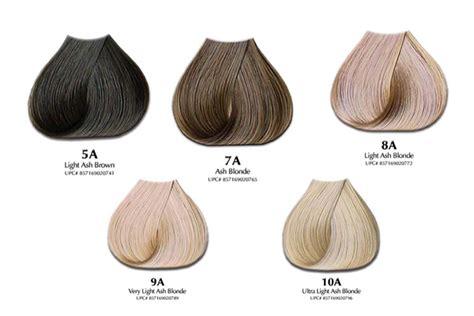 ash hair color chart ash hair color chart will ash hair color offset orange