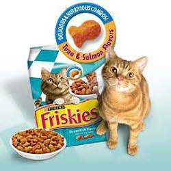 best cat food for cats cat food cats wiki fandom powered by wikia