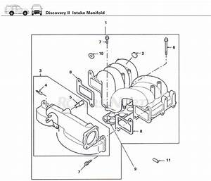 Intake Manifold  Top End  Engine  Discovery Ii