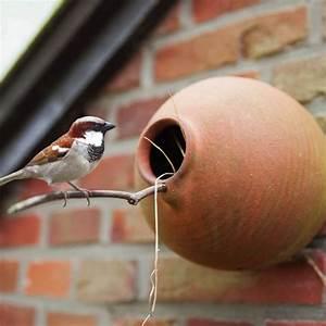 Kleine Vögel Im Garten : die besten 17 ideen zu kleine v gel auf pinterest sch ne ~ Lizthompson.info Haus und Dekorationen