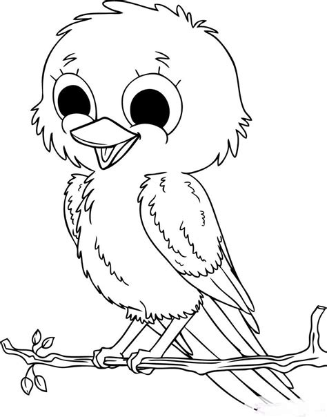 cute baby birds coloring pages  printables