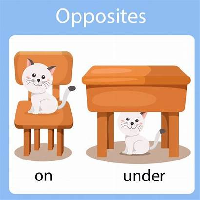 Under Opposites Opposite Vector Illustrator Cartoon Illustration