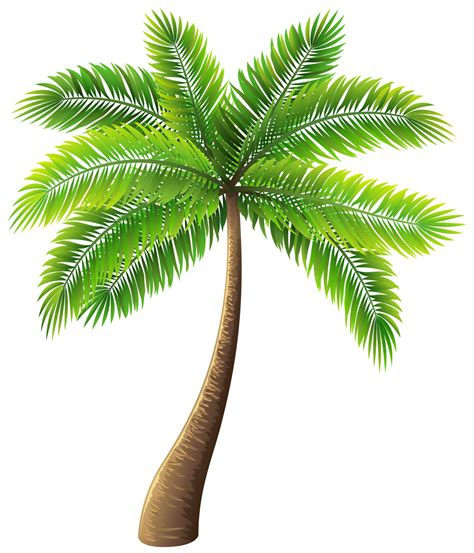 Clipart Palm Tree Palm Tree Png Clip