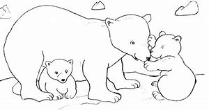 Hd Wallpapers Coloriage Animaux Polaires Imprimer Wallpaper Wall