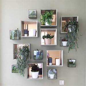 25 best ideas about plant wall on pinterest wall With kitchen cabinets lowes with air plant wall art