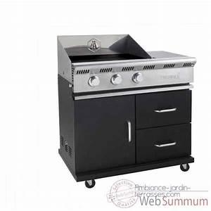 Plancha Forge Adour Prestige 600 : plancha forge adour prestige 450 po le cuisine inox ~ Dailycaller-alerts.com Idées de Décoration