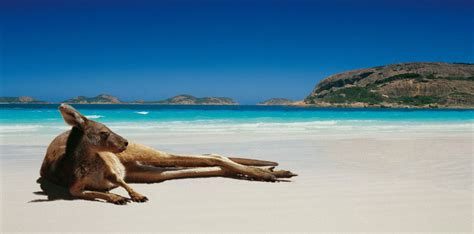 tourism australia launches  campaign  attract indian