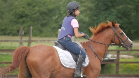 horse riding academy college