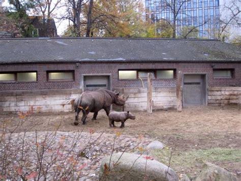 Zoologischer Garten Berlin Tripadvisor by Zoologischer Garten Berlin Zoo Picture Of Berlin