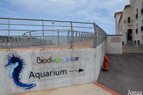 aquarium banyuls sur mer les zoos dans le monde aquarium de banyuls sur mer