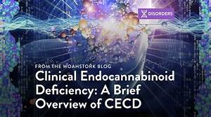 Clinical Endocannabinoid Deficiency  A Brief Overview Of