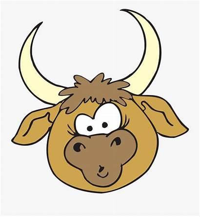 Clipart Horns Bull Clipartkey