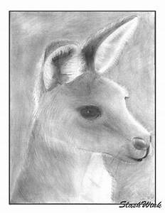 kangaroo drawing by slashwink on DeviantArt