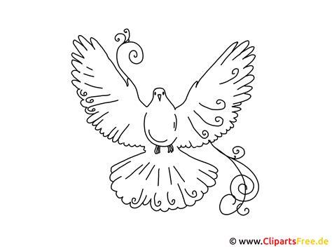 süße bilder zum malen bilder selber malen vorlagen vogel taube
