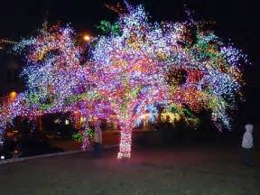 strange christmas lighting displays amazing tree covered with thousands of colored lights