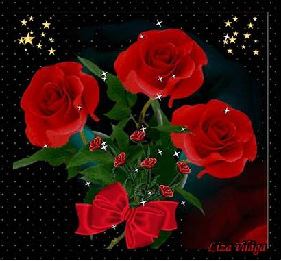 Flores Gifs Lindas Hermosas Rosas Bonitas Hermosos