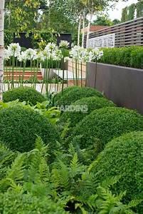 modele jardin contemporain obasinccom With amenager un jardin paysager 15 creer un jardin de topiaires un jardin de buis