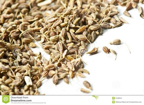 Anise Seeds Stock Images Image 9158354