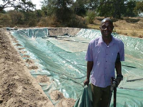 How To Create Backyard Fish Farming