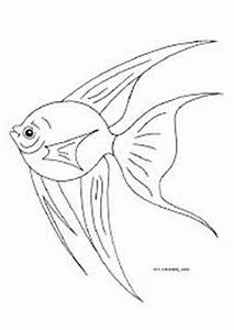Angelfish Coloring Pages Getcoloringpagescom