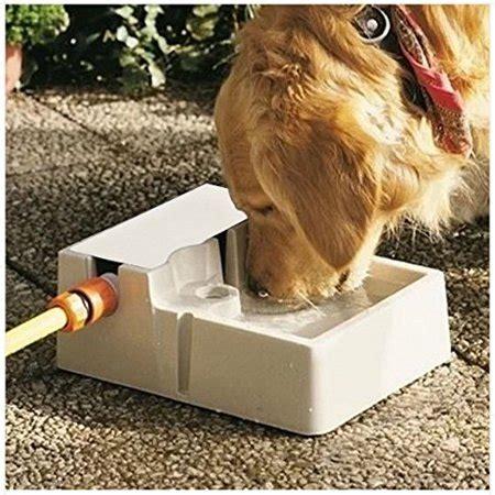 automatic  watering indoor outdoor pet fountain fresh