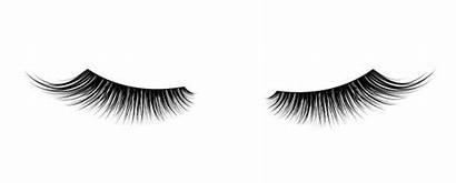Eyelashes False Eye Mascara Graphics Illustrations Lashes