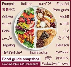 Canada U2019s Food Guidelines  U2013 Interpreting Canada U2019s 2019 Food