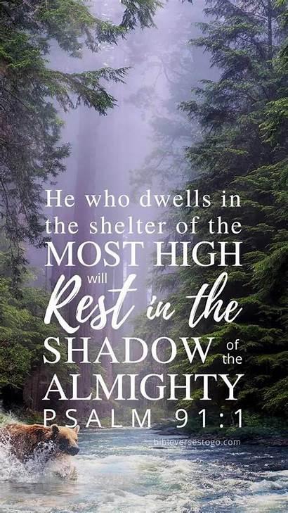 Psalm 91 Forest Bible Stream Psalms Verse