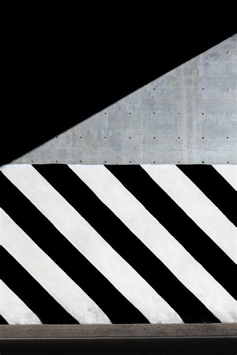 fotos gratis ala ligero en blanco  negro madera