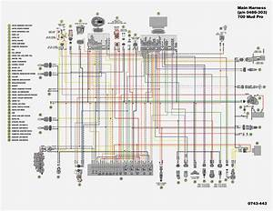 Grizzly 660 Wiring Diagram