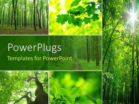 template forest powerpoint template collage of a forest with trees and green leaves showing nature 15002
