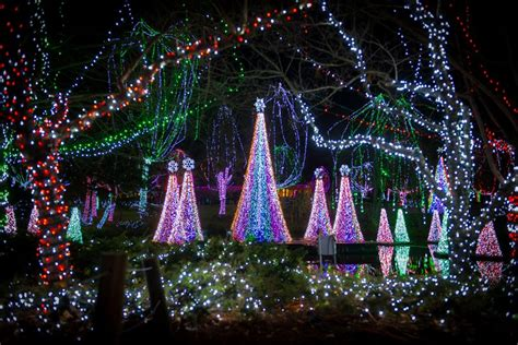lights columbus columbus zoo columbus