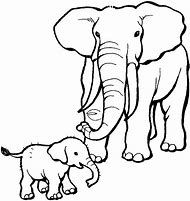 Best Elephant Coloring Pages Ideas And Images On Bing Find What