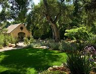 Best Landscaping Around Trees Ideas And Images On Bing Find What
