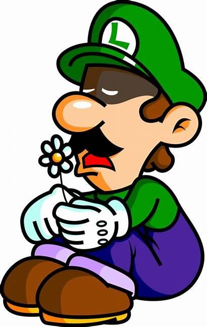 Luigi Sad Mansion Beta Scratchpad Wikia Elements