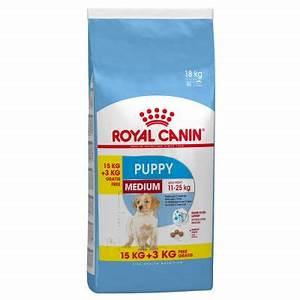 Royal Canin Junior Medium : royal canin medium puppy junior risparmia con bitiba ~ Watch28wear.com Haus und Dekorationen