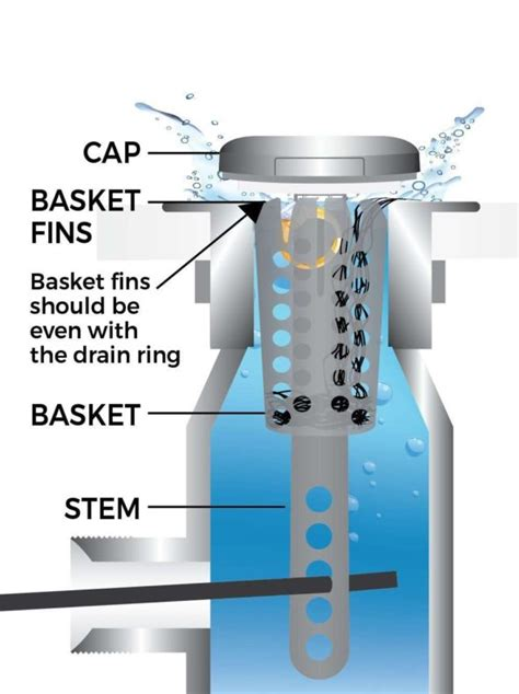 drain strain  clog sink stopper gadgetkingcom
