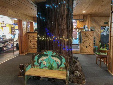 Bulk java bob's coffee is sold at 10.75/lb. Treehouse Cafe - Roadside Secrets