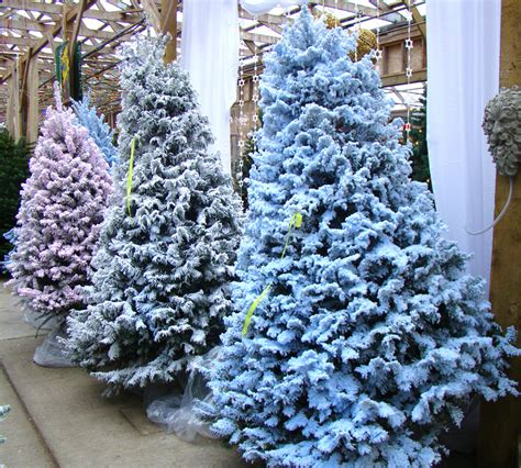 28 best flocking for christmas trees where to buy