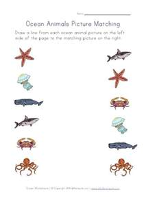 Ocean Animals Matching Worksheets