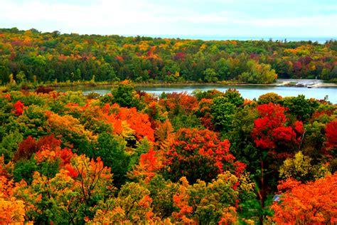 fall color fall colors around usa randomvoyager