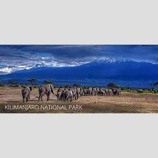 Kilimanjaro National Park  Facts, Featu