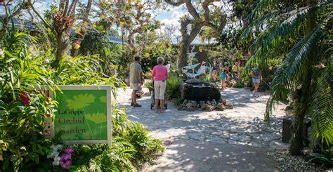 naples botanical gardens naples botanical garden information must do visitor guides