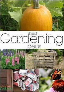 Best Gardening Ideas