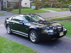 StangSix 2002 Ford Mustang Specs, Photos, Modification Info at CarDomain
