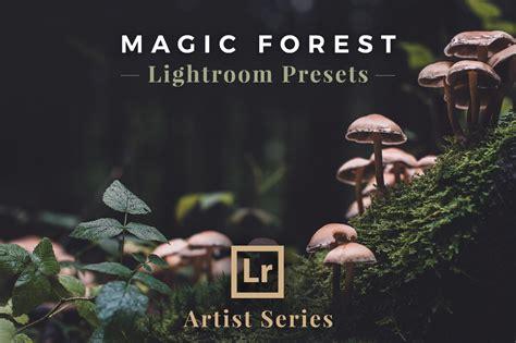 magic forest lightroom presets actions creative market